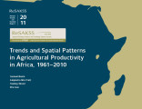 Trends and spatial patterns in agricultural productivity in Africa, 1961-2010