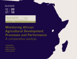 Monitoring African agriculture development processes and performance